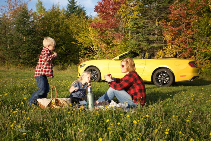 Thanksgiving picnic Ford Mustang 50 year edition