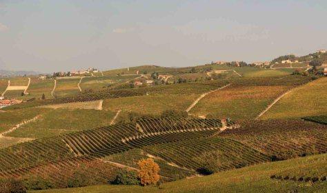 Piemonte 2