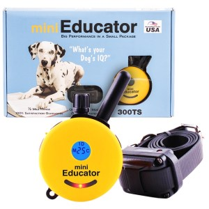 e-collar-mini-educator-remote-dog-trainer-one-dog-system