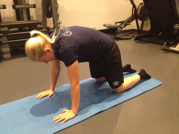 Back Flexion Kneeling G4 Physiotherapy Fitness