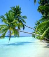 de férias, praia, volto logo, vacations, beach, be back soon