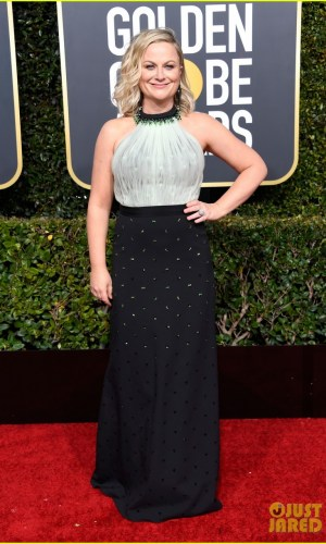 golden globes 2019, golden globes, awards season, red carpet, fashion, look, gown, tapete vermelho, premiação, moda, look, vestido longo, hollywood, amy poehler