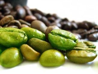 Adelgaza con granos de café verde « ¿Es realmente efectivo para bajar de peso el extracto de grano de café verde?