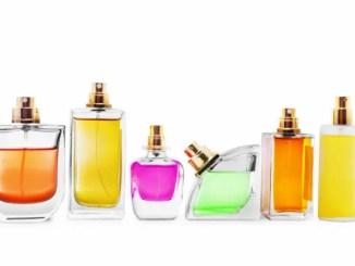 conocer sobre perfumes aprender « Conoce más sobre los Perfumes