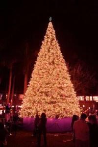 Shops of Merrick Annual Tree Lighting Celebration