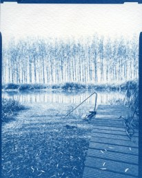 Deep East I. – 10x15cm cyanotype contact print