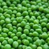 veganes Eiweißpulver - gesunde Ernährung mit Dr. Gabriela Hoppe