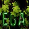 Vegan leben mit Dr. Gabriela Hoppe | Erfolg durch Ernährung | Ernährungsspezialistin & Heilpraktikerin - Bild by Pixabay