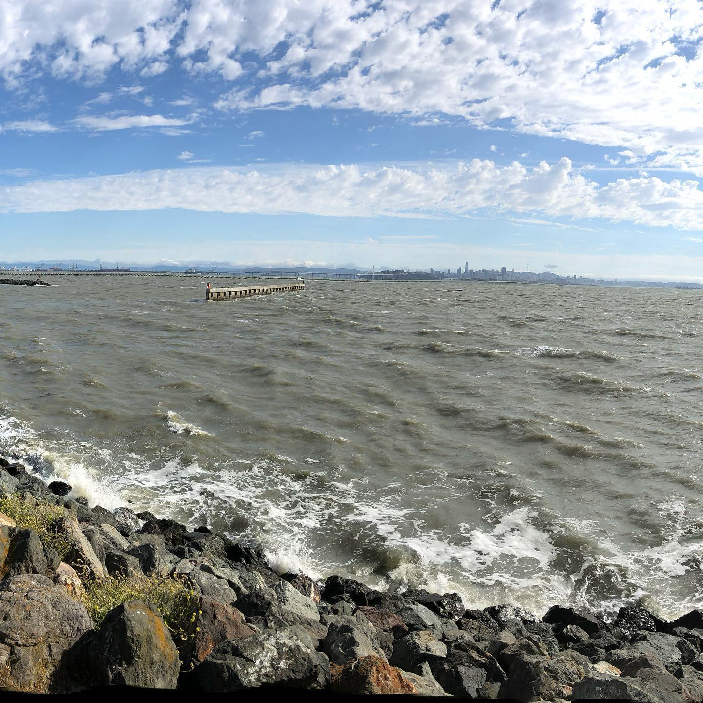 Gorgeous breeze on Friday afternoon at the Berkeley Marina.