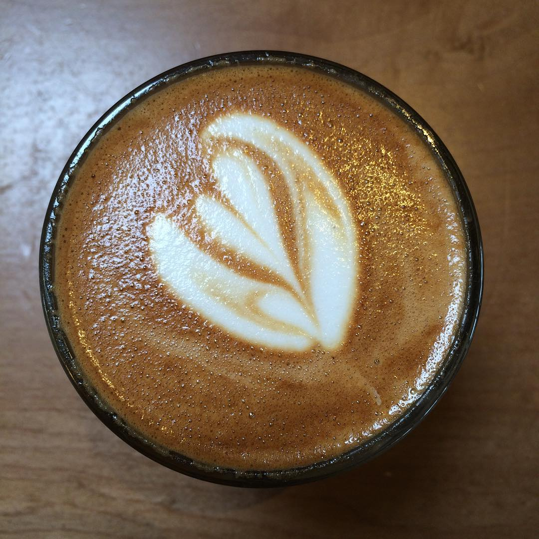 Really delicious cortado here. Working with David on Lightinprison.org