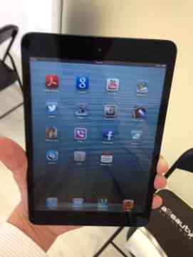 Display iPad mini 3