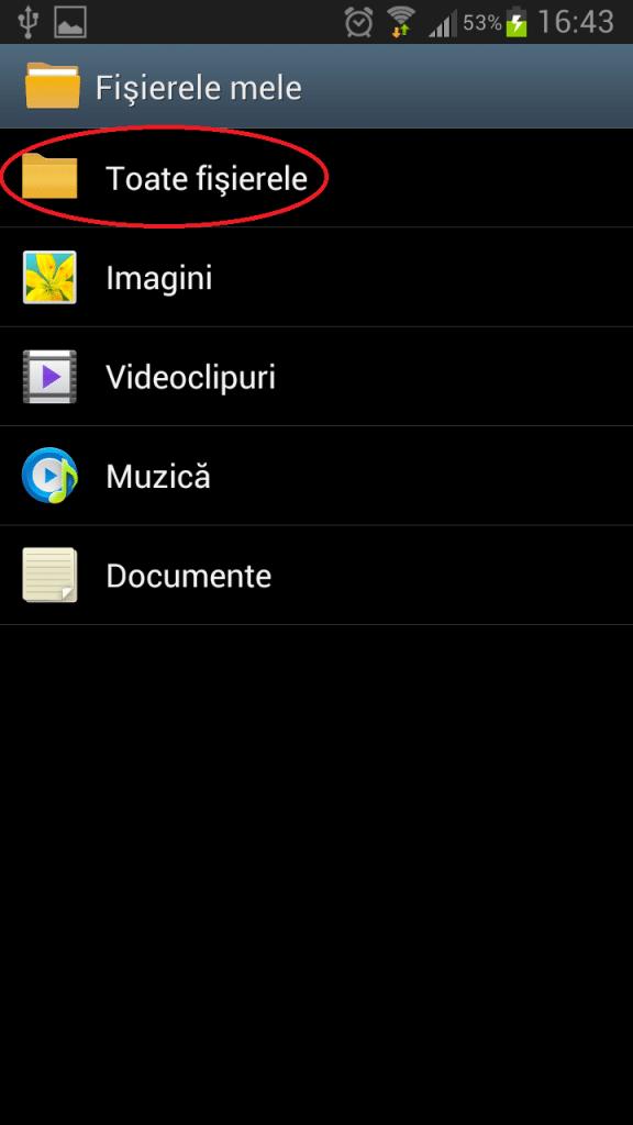 Instalare iGO pe Android - catre aplicatie