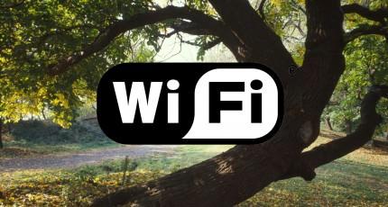 Internet wireless în mașină