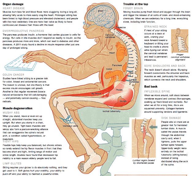 Efectele statului pe scaun