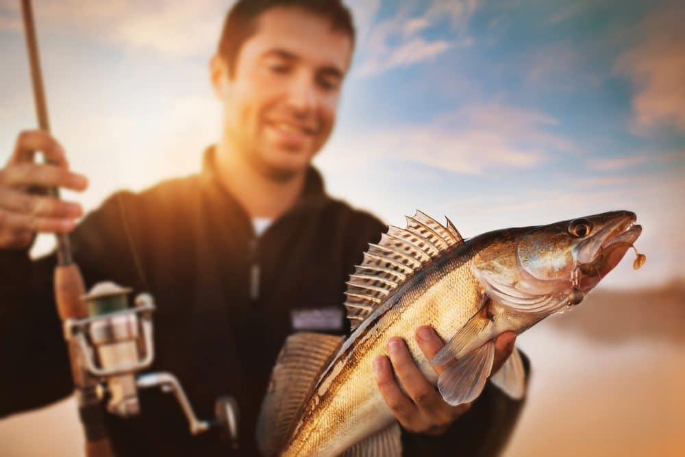 pescuit