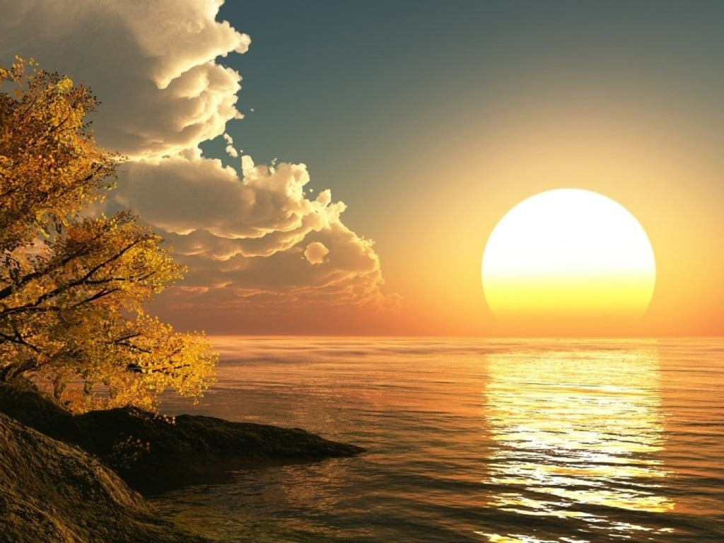 Buna ziua Buna dimineata Buna seara Noapte buna