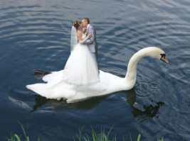 funniest-russian-wedding-portraits