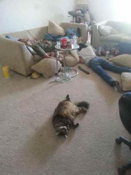 images-of-drunks