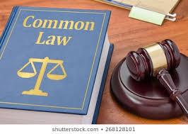 """Cosa si intende per """"Equity"""" negli ordinamenti di common law"""
