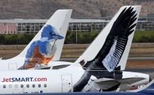"""Los """"pajaros"""" de JetSmart - Martin Pescador y el Condor Andino (foto: Rafael Reca)."""