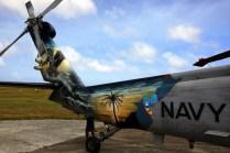 Guam Seahawk