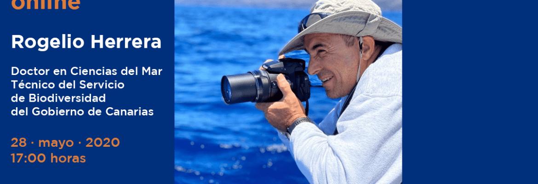 Entrevista online con Rogelio Herrera