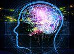 脳に1つだけアプリをインストールできるとしたら?