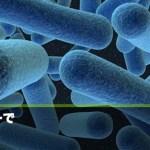 スマホに付いてる雑菌の量wwwwwwwwwwwwwww