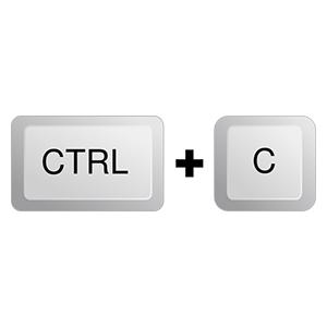 ctrl-c-hi%e3%81%ae%e3%82%b3%e3%83%94%e3%83%bc