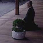TDK、人と対話する自走式盆栽「BonsAI」を発表 日光を求め歩き回り、水をねだり、人生を語る