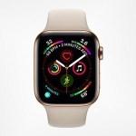 ワイ、Apple Watchを購入してしまう