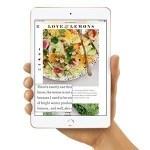 【朗報】3月に発売(噂)される新iPad mini、ベゼルが狭くなり画面が広くなる(かもしれない)