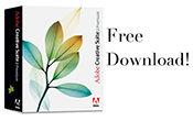 CS2-download