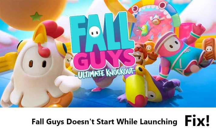 Fall Guys Doesn't Start While Launching Fix