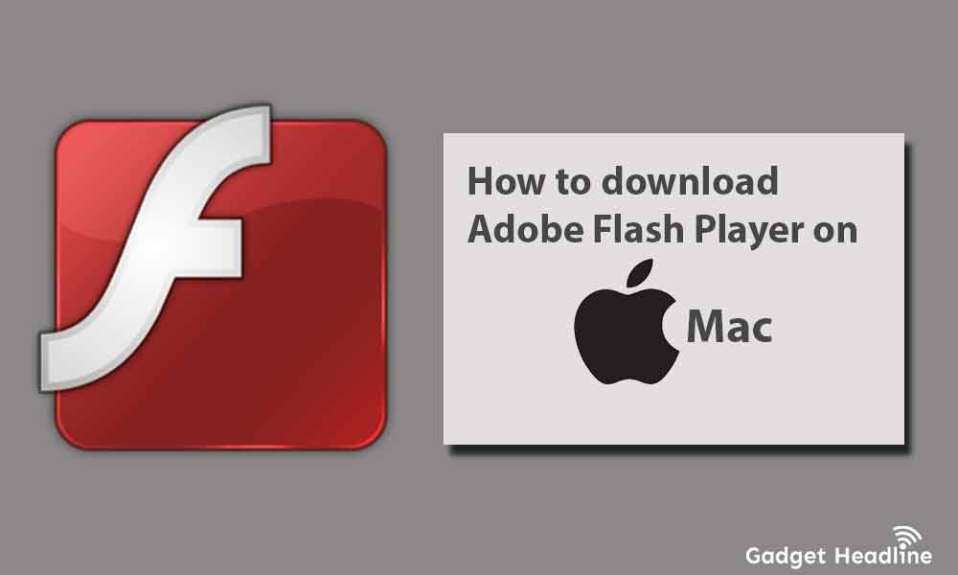 How to download Adobe Flash Player on Mac