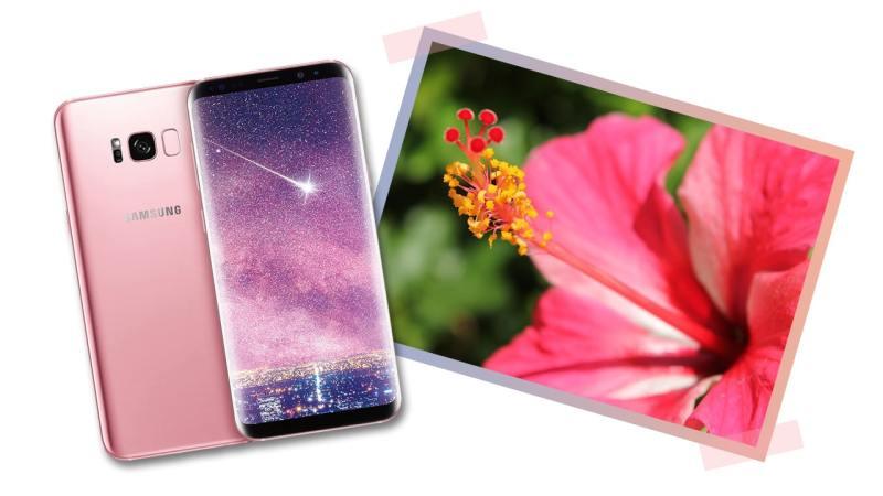 Pink Samsung Galaxy s8+ matches the gumamela