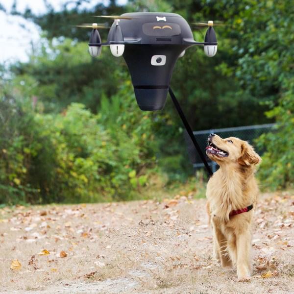 Drone para pasear al perro