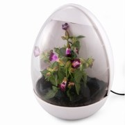 USB Green House - Careful What You Grow