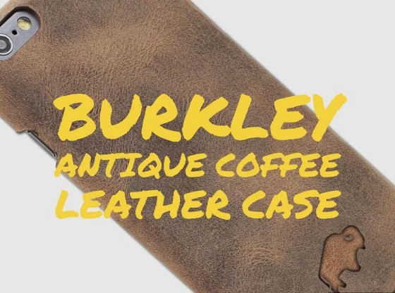 Burkley case