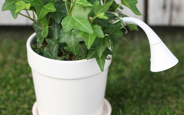 MyFlower MF100 mide la humedad y te avisa de cuándo toca regar las plantas