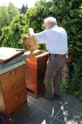 Look at our hive!