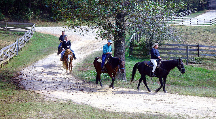 horseback riding at trackrock stables in blairsville georgia