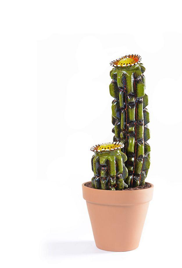 Mario Pezzi, Cactus