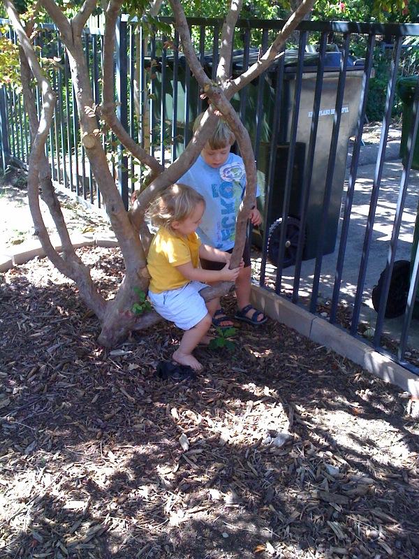 Kids Garden Makeover Candidate