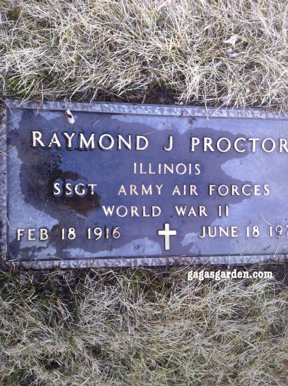 SSGT Raymond James Proctor Army Air Force, World War II