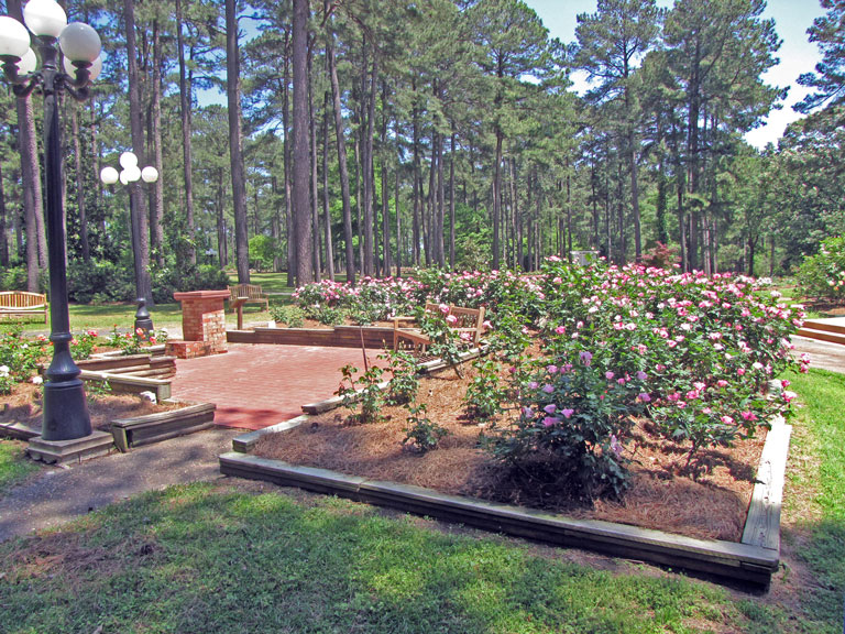 Deep South District Rose Garden