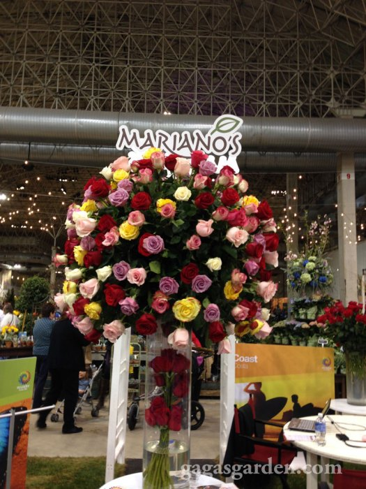 Mariano's Rose Display at The Chicago Flower and Garden Show