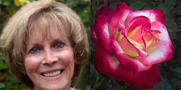 Sally Long   2015 American Rose Society Convention Photography Panelist  Her Double Delight Preview