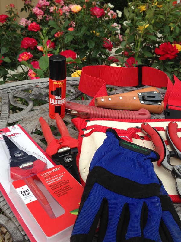 My Corona Gardening Tools | Gloves for Protection