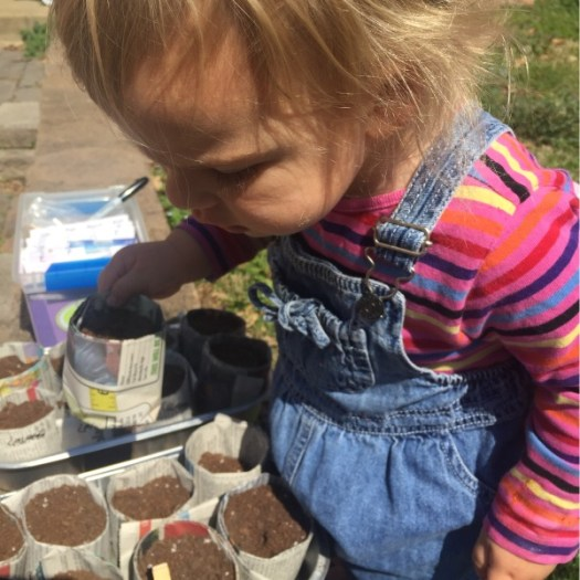 'Sow' Easy A Baby Can 'Sow Seeds' For The Kids Garden